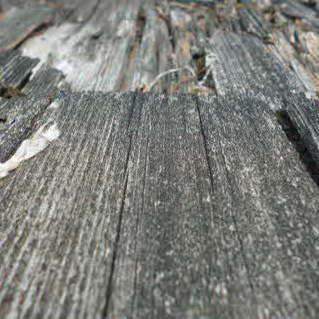 Morsches Holz ausbessern und verfestigen