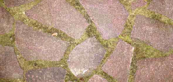 polygonalplatten verlegen verfugen anleitung splitt