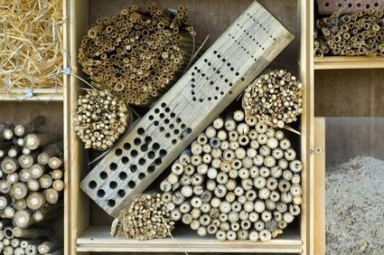 Aus einer Holzkiste ein Bienenhotel bauen