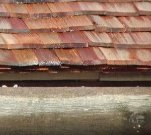 Holzschindeln verlegen Traufe Holzdachrinne