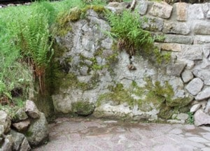 Steingärten Bilder Fotos