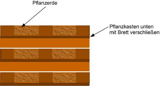 Kräuterwand aus einer Europalette selber bauen