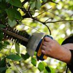 Akku-Geräte bei Gartenarbeiten richtig einsetzen